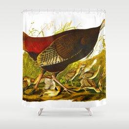 Great American Hen Shower Curtain