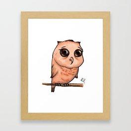 Cute Critters - Baby Owl Framed Art Print