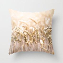 Summer Sun Corn Throw Pillow