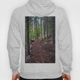The Revelstoke Trail I Hoody