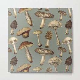 Fun Fungi Mushrooms No. 3 Metal Print