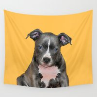 pitbull Wall Tapestries featuring Pitbull puppy by ritmo boxer designs