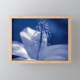 Enchanting Moments - Pua Aloalo - Koki'o Ke'oke'o - Hibiscus Arnottianus - Hawaiian White Hibiscus Framed Mini Art Print