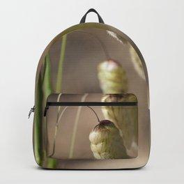 Rattlesnake Grass Backpack