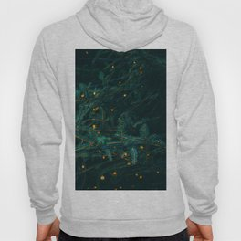 Evergreen and Golden Lights (Color) Hoody