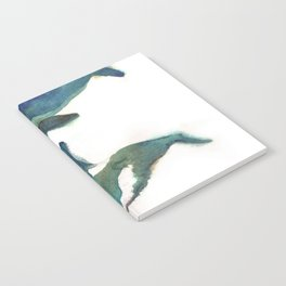 two whales Notebook