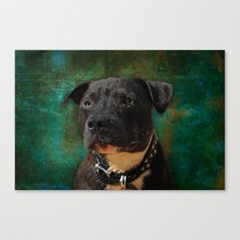 Blue Dog Canvas Print