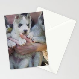 Young child playing with collie puppy in the count Stationery Cards