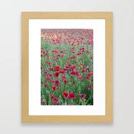 Bright poppies Framed Art Print