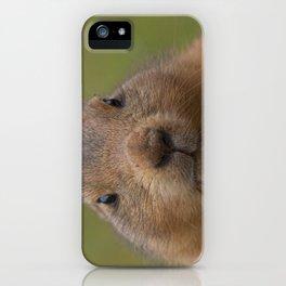 I'm cute iPhone Case