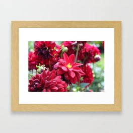 Blooming Red: Imperfectly Perfect Framed Art Print