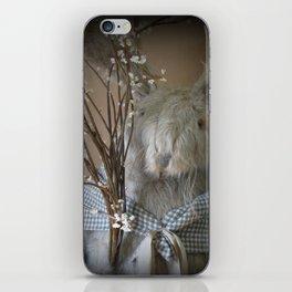 Templeton iPhone Skin