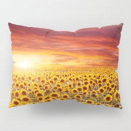 Field of blooming sunflowers on a background sunset Pillow Sham