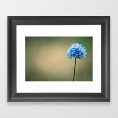 Blue Cotton Framed Art Print
