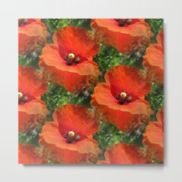 Poppy Power Metal Print