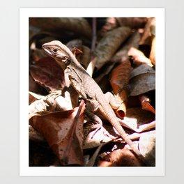 Forest Lizard Art Print