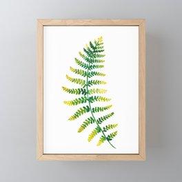 Fern Watercolor   Botanical Painting Framed Mini Art Print