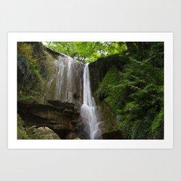 Amazon rainforest and a waterfall landscape photography Art Print