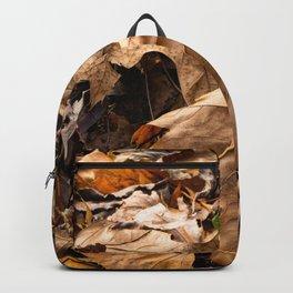 Fall has Fallen Backpack
