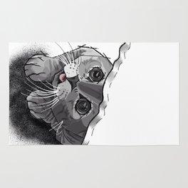 The Curious Cat 02 Rug