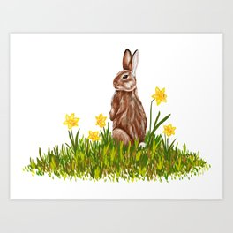 Rabbit and Daffodils Art Print