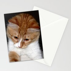 Stare Down Stationery Cards