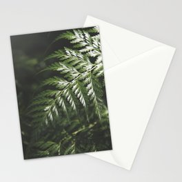 Moody Forest / Nature Photography Stationery Cards