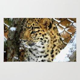Amur Leopard Cub in the Snow Rug