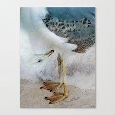 Fantasy Seagull Canvas Print