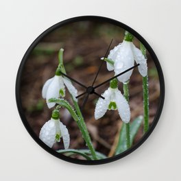 Snowdrops and water Wall Clock