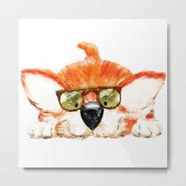 Baby Corgi wearing glasses Metal Print