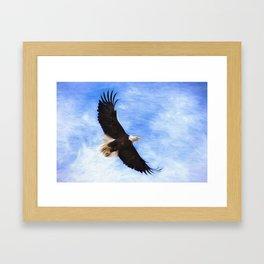 Bald Eagle Soaring In The Sky Framed Art Print