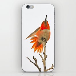 Stand for Something iPhone Skin