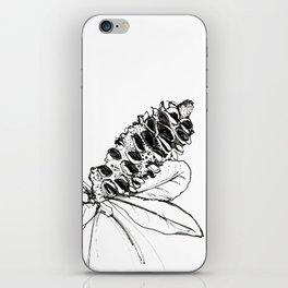 Banksia iPhone Skin