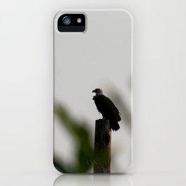 Eagle at Sunrise iPhone Case