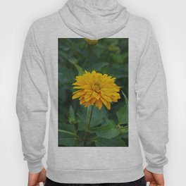 Peaceful Way Hoody