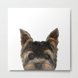 Yorkshire Terrier Mix colorDog illustration original painting print Metal Print