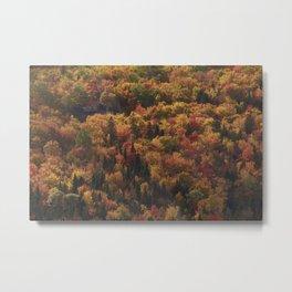 Landscape in Canada - Autumn Metal Print