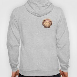 Bay Scallop Hoody