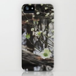 Dogwoods at the River iPhone Case