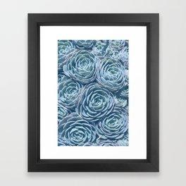Fine Art Photograph of a Succulent, Blue and Green Framed Art Print