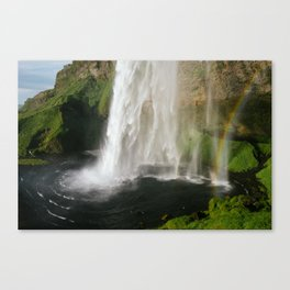 Steamed Canvas Print