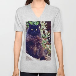 The King of cats Pomponio Mela Unisex V-Neck