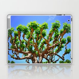 Gnarly Tree Of San Francisco Laptop & iPad Skin