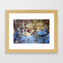 Colors of Autumn Framed Art Print