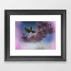 pink signs of spring on texture Framed Art Print