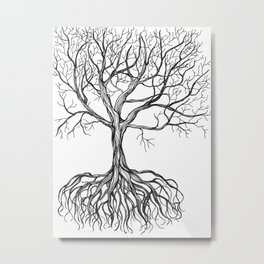 Bare tree with root Metal Print