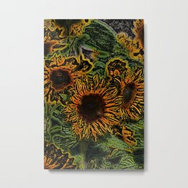 Sunflower 18 Metal Print