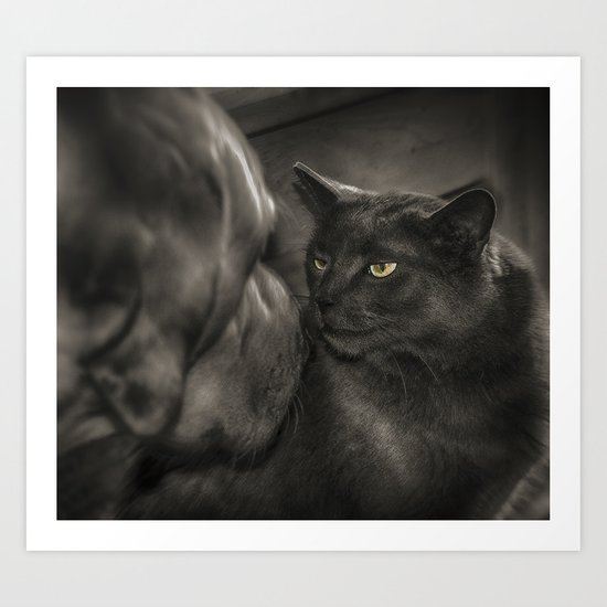 Cat Versus Dog Art Print