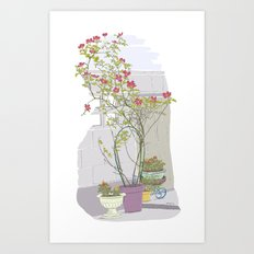 Little potted garden Art Print